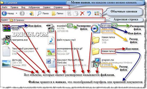 Файлы разных документов, папка и ярлык